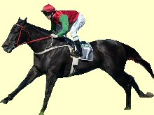 Hot Danish - Doomben 10000 winner