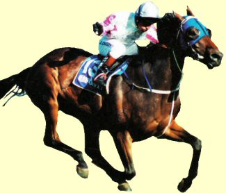 Might And Power - racehorse - Melbourne Cup winner