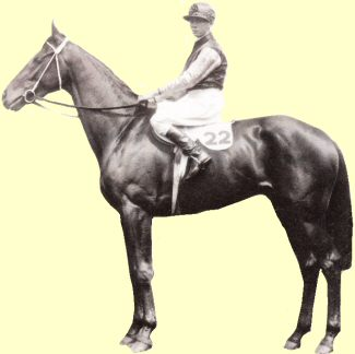 Whittier - racehorse - Caulfield Cup winner