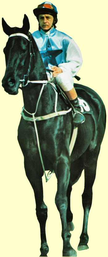 Just Topic racehorse Champagne Stakes winner